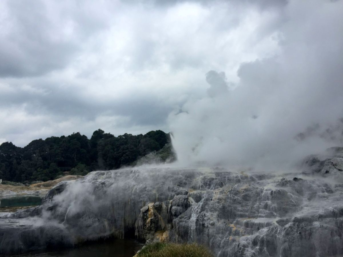 Rotorua the steamy city